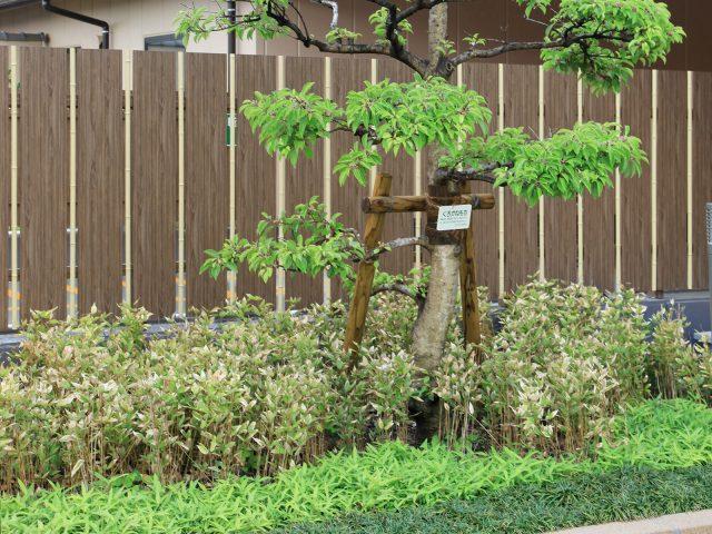 こだわり職人竹をアクセントに挟み。単調にならないデザインが楽しめます