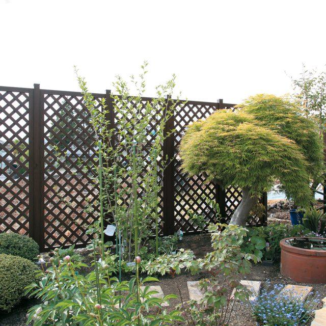 落ち着いたダークパインの色合いが庭の背景に調和します
