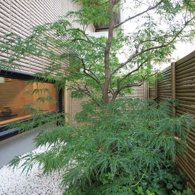 美しい丸竹を使用した5型(みす垣)