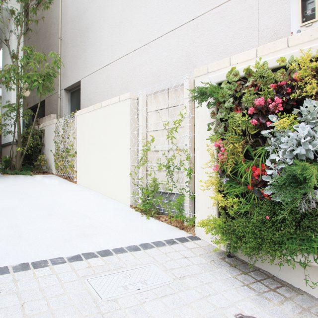 植栽の緑とホワイトカラーが壁面とも美しく調和