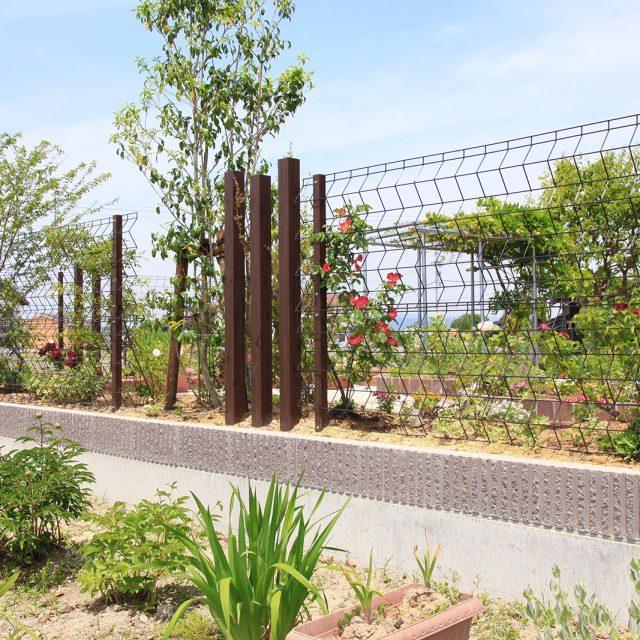 植栽用メッシュフェンスとして、つるを絡ませて緑のカーテンをつくるトレメッシュフェンス