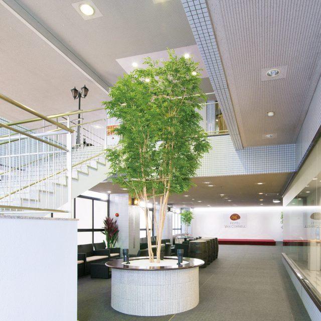 大型の人工樹 トネリコ株立