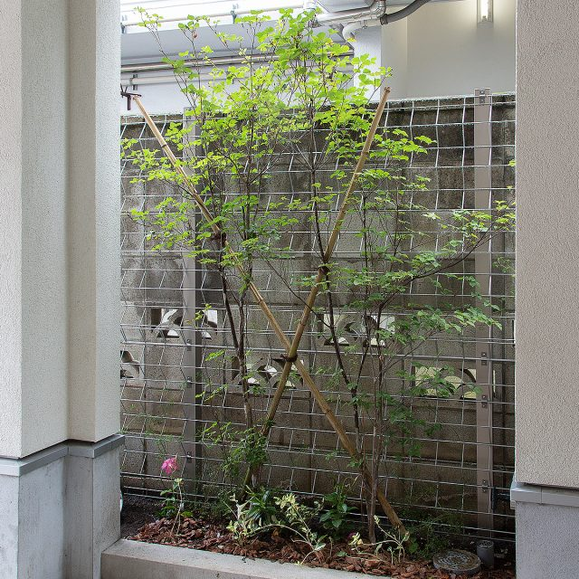 古いブロック塀を緑化フェンスにリフォーム