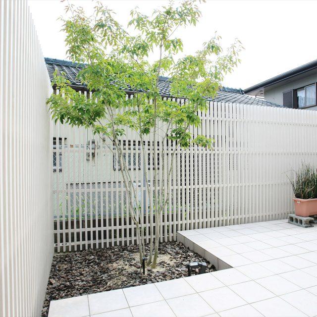 ホワイトを基調とした爽やかな庭まわり