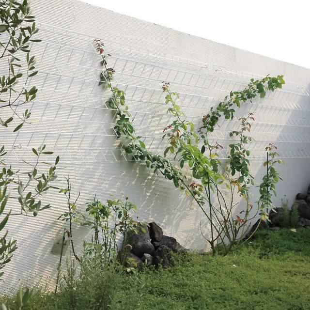 ホワイトのカラーで背景の壁や植物とも調和します