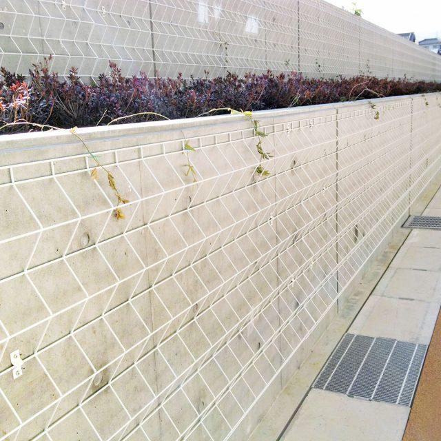 RCの塀に壁貼りして緑化を導く