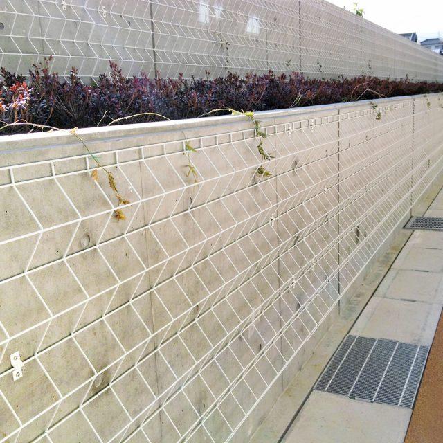 コンクリート打ちっぱなしの壁にトレメッシュシングルを設置し植物を絡ませる