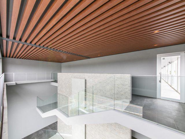 天井が美しいキャンバスに進化します