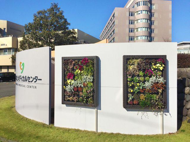 壁面緑化にアートキャンバス人工ラタンフレームを採用