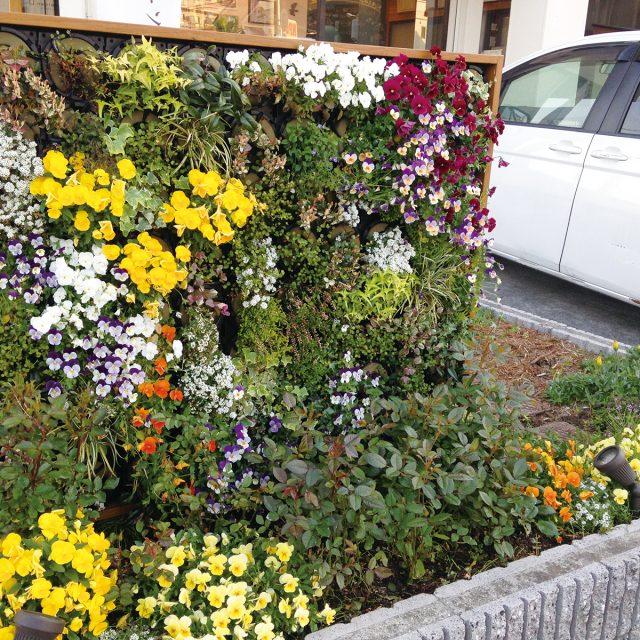 エントランスの花壇とアートキャンバスをコーディネート