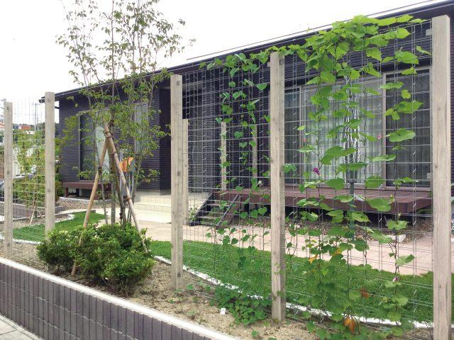 緑化フェンスの目かくしで、デッキをくつろぎの空間に