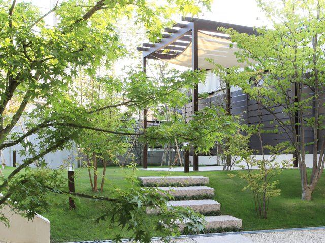 パーゴラ・ポーチと美しい緑の心地よい空間