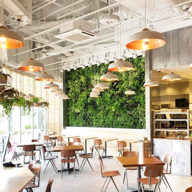 室内の壁面にもアートな空間を。グリーンの壁面が心地よい空間をつくります