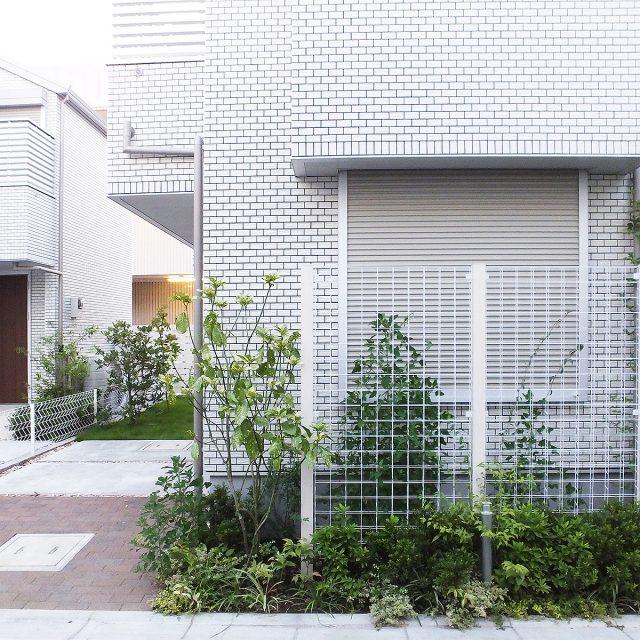 植物と相性の良いホワイトのトレメッシュフェンス