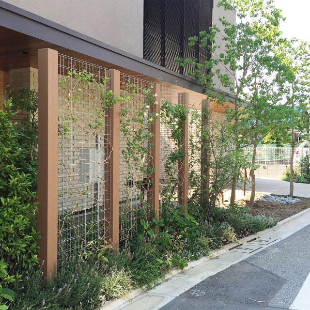 トレメッシュフェンスに植物を絡めて緑のカーテンに