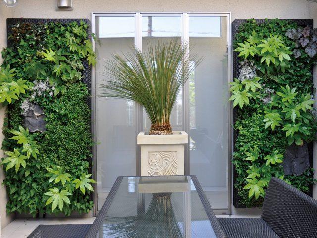 デザイン性に優れた壁面緑化 アートキャンバス