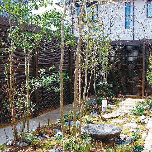 情緒性のあるこだわりエコ竹を使用したエバースクリーン大津垣