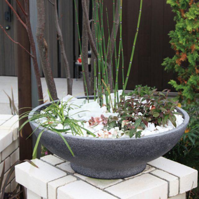 石目風の灰褐色の鉢と和の植物は馴染みます