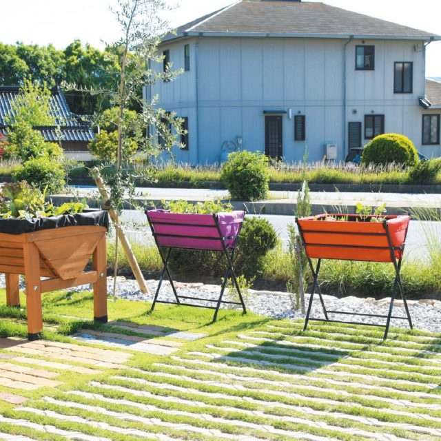 畑がなくても、すぐ始められる人にやさしい家庭菜園