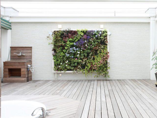 ホームリゾート空間に最適なデザイン性に優れた壁面緑化