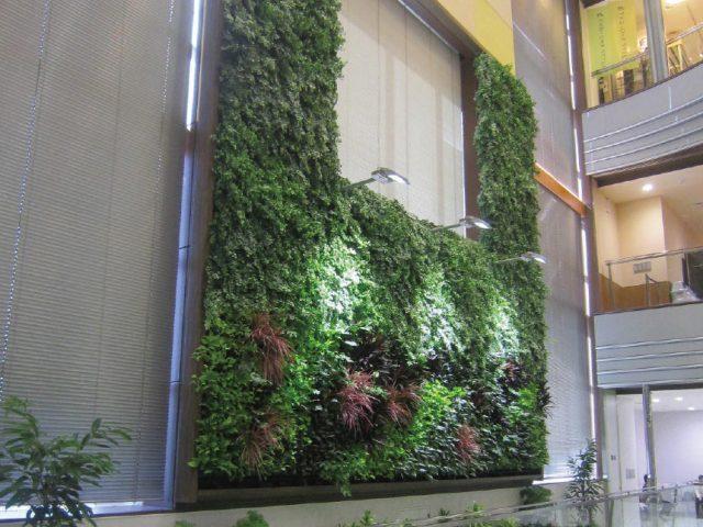 室内にもインドアタイプの壁面緑化