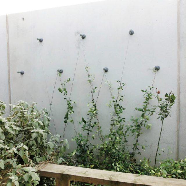 簡単施工でリーズナブルなワイヤータイプの壁面緑化システム