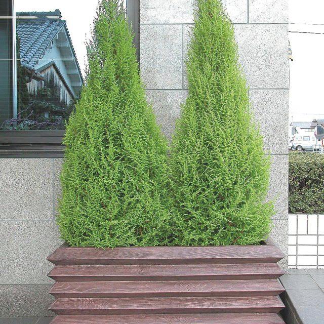 軽くて使いやすいFRP(ガラス繊維強化プラスチック)製プランター。屋上緑化や公共施設に最適