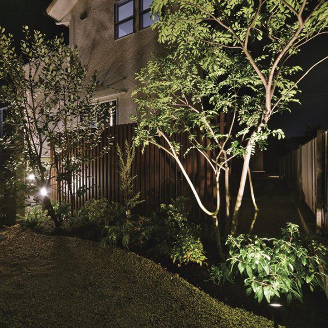 フェンスと樹木で昼間とは違った幻想的な雰囲気の空間