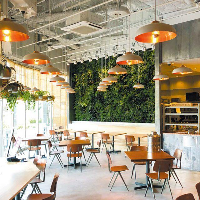 アートキャンバスを使ってカフェの店内を緑化